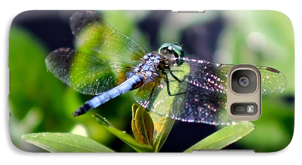 Galaxy Case featuring the photograph Blue Dragonfly Blue Dasher by Jeanne Kay Juhos