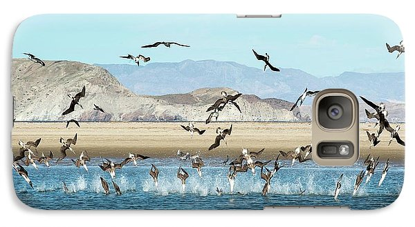 Blue-footed Boobies Feeding Galaxy S7 Case by Christopher Swann