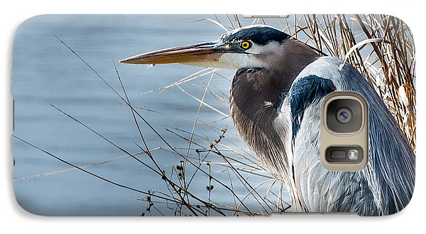 Galaxy Case featuring the photograph Blue Heron At Pond by John Johnson