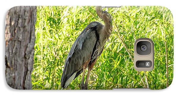Galaxy Case featuring the photograph Blue Heron At Rest by John Johnson
