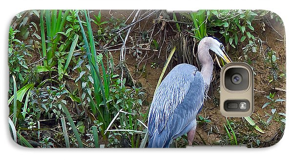 Galaxy Case featuring the photograph Blue Heron by Brian Williamson