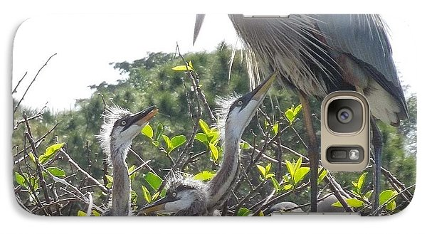 Galaxy Case featuring the photograph Blue Heron Family by Ron Davidson
