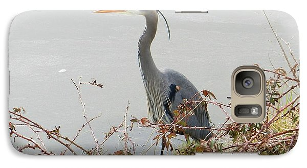 Galaxy Case featuring the photograph Blue Heron In Padilla Bay by Karen Molenaar Terrell