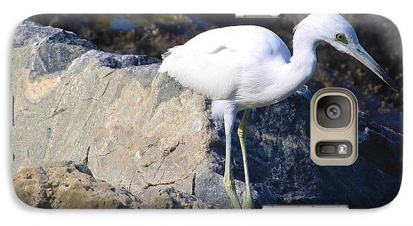 Galaxy Case featuring the photograph Blue Heron Squared by Chris Thomas