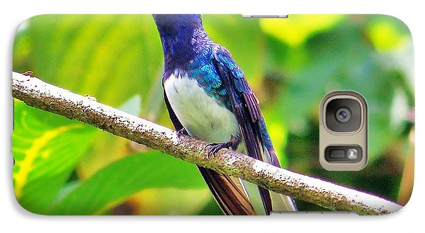 Galaxy Case featuring the photograph Blue Humming Bird by Al Fritz