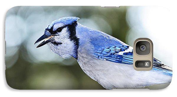 Blue Jay Bird Galaxy Case by Elena Elisseeva