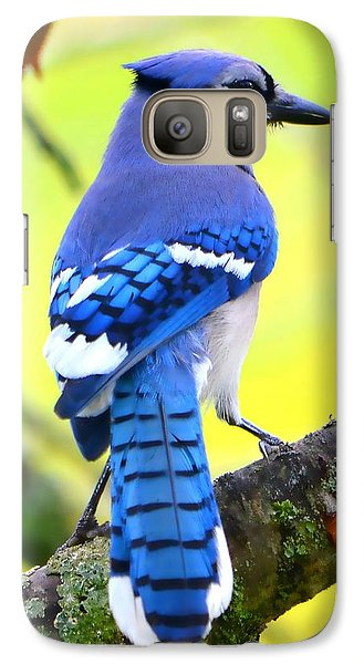 Galaxy Case featuring the photograph Blue Jay by Deena Stoddard