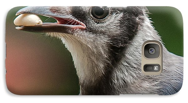 Galaxy Case featuring the photograph Blue Jay Formal Portrait by Jim Moore