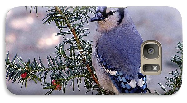 Galaxy Case featuring the photograph Blue Jay - Morning Visitor  by Susan  Dimitrakopoulos