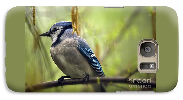Bluejay Galaxy S7 Case - Blue Jay On A Misty Spring Day by Lois Bryan