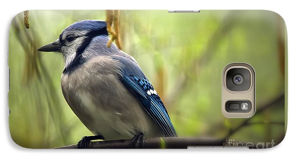 Blue Jay On A Misty Spring Day Galaxy S7 Case by Lois Bryan