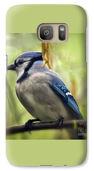 Blue Jay On A Misty Spring Day - Square Format Galaxy S7 Case by Lois Bryan