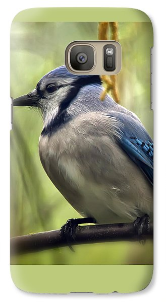 Blue Jay On A Misty Spring Day - Square Format Galaxy S7 Case