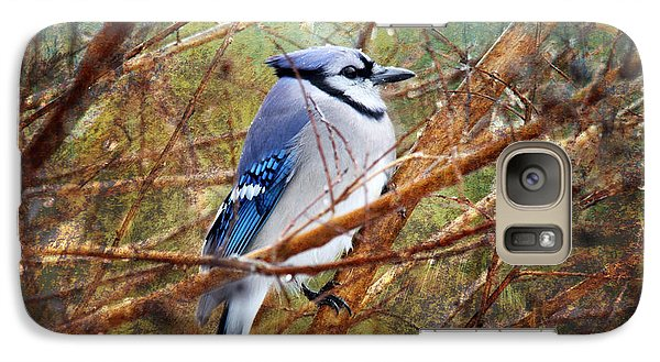 Galaxy Case featuring the photograph Blue Jay by Trina  Ansel