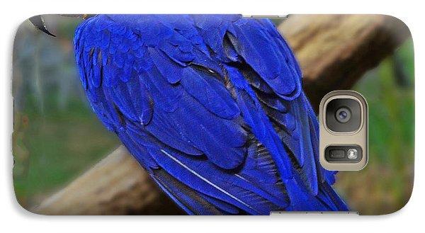 Blue Parrot Galaxy S7 Case