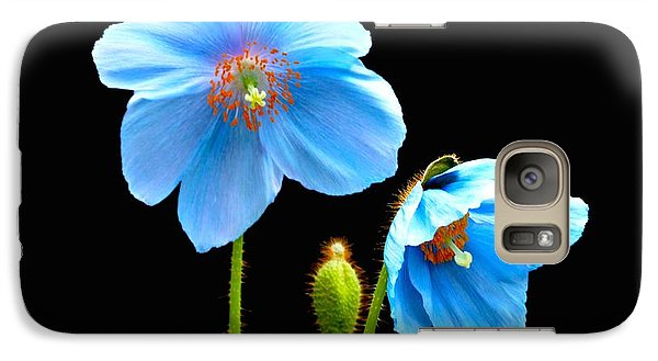 Galaxy Case featuring the photograph Blue Poppy Flowers # 4 by Jeannie Rhode