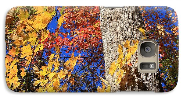 Galaxy Case featuring the photograph Blue Ridge Parkway Fall Foliage-north Carolina by Mountains to the Sea Photo