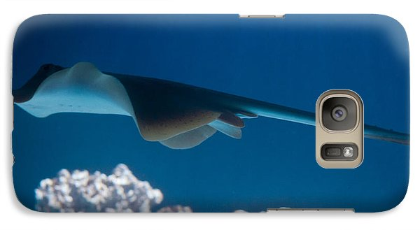 Galaxy Case featuring the photograph Blue Spotted Fantail Ray by Eti Reid
