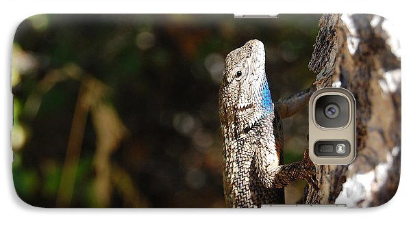 Galaxy Case featuring the photograph Blue Throated Lizard 2 by Debra Thompson