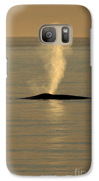 Galaxy Case featuring the photograph Blue Whale At Sunset In Monterey Bay California  2013 by California Views Mr Pat Hathaway Archives