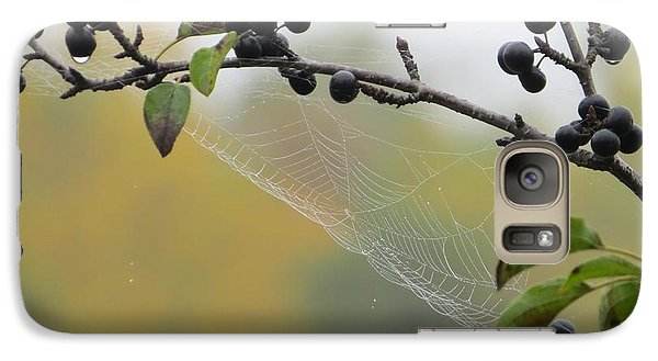 Galaxy Case featuring the photograph Blueberry Web by Nikki McInnes