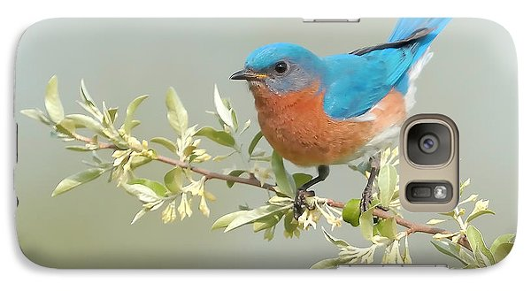 Bluebird Floral Galaxy S7 Case by William Jobes