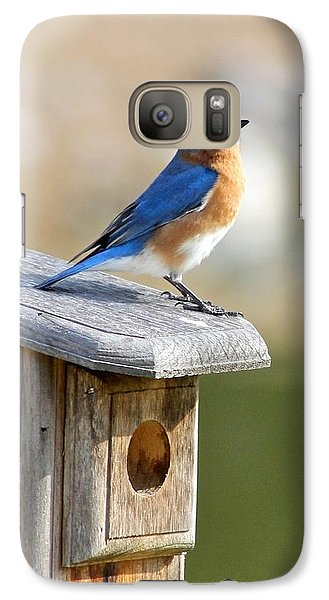 Galaxy Case featuring the photograph Bluebird House Hunting by Jeanne Kay Juhos