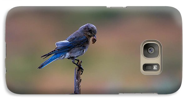 Bluebird Lunch Galaxy Case by Mike  Dawson