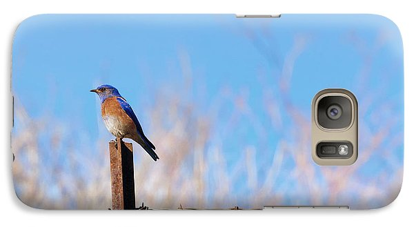 Bluebird On A Post Galaxy Case by Mike  Dawson