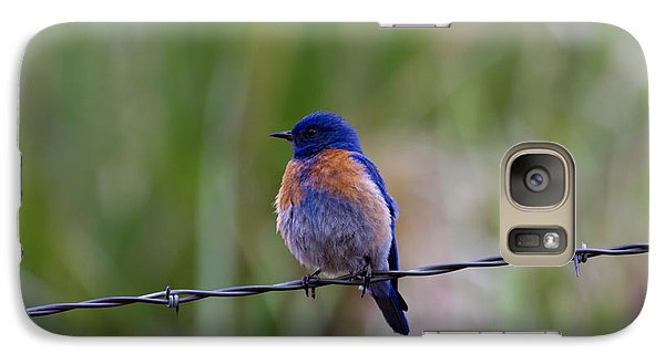 Bluebird On A Wire Galaxy Case by Mike  Dawson