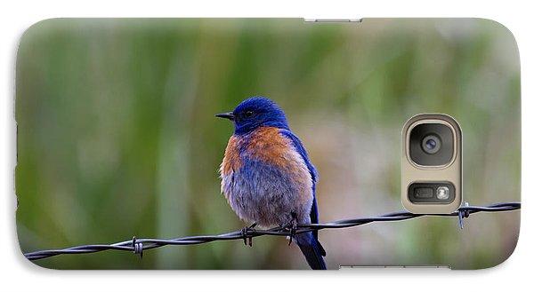 Bluebird On A Wire Galaxy S7 Case