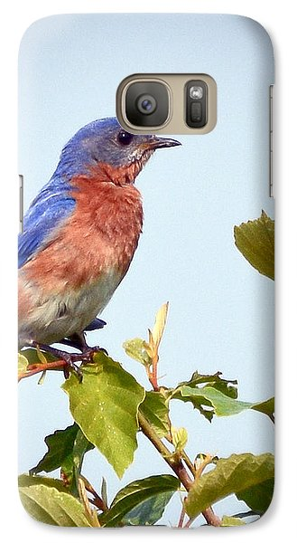 Galaxy Case featuring the photograph Bluebird On Top by Kerri Farley