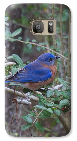 Galaxy Case featuring the photograph Bluebird by Patricia Schaefer