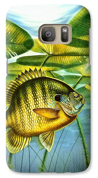 Galaxy Case featuring the painting Blugill And Lilypads by Jon Q Wright