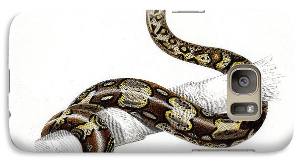 Boa Constrictor Galaxy S7 Case by Collection Abecasis