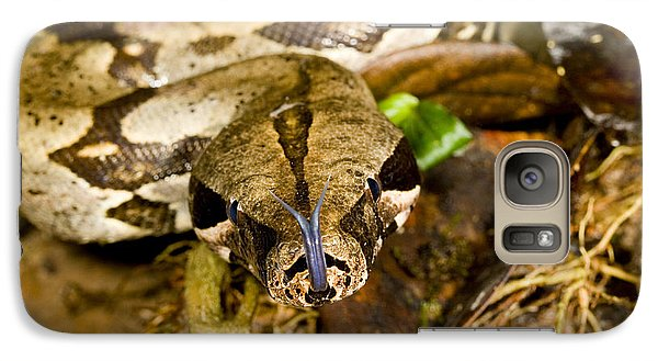 Boa Constrictor Galaxy S7 Case by Gregory G. Dimijian, M.D.