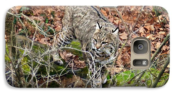 Galaxy Case featuring the photograph Bobcat by William Tanneberger