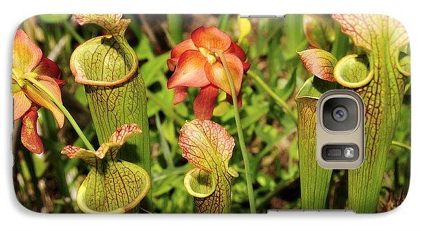 Galaxy Case featuring the photograph Bog Garden I by Davina Washington