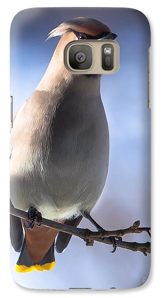 Galaxy Case featuring the photograph Bohemian Waxwing Blue by Rose-Maries Pictures