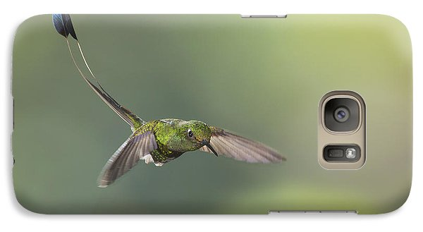 Galaxy Case featuring the photograph Booted Racket-tail Hummingbird by Dan Suzio