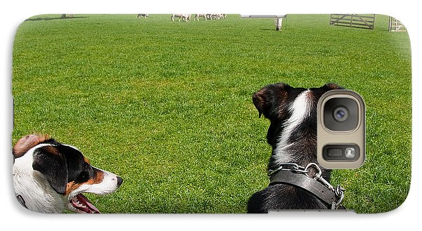 Galaxy Case featuring the photograph Border Collies by Dennis Cox WorldViews