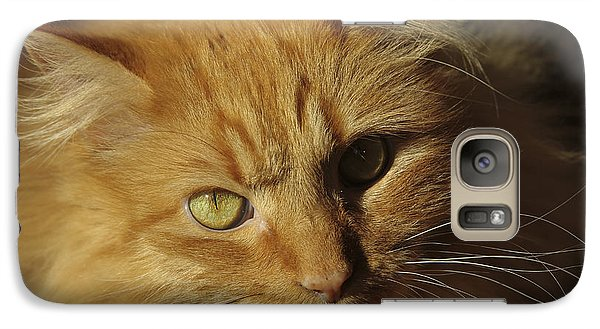 Galaxy Case featuring the photograph Bosco by Marta Alfred