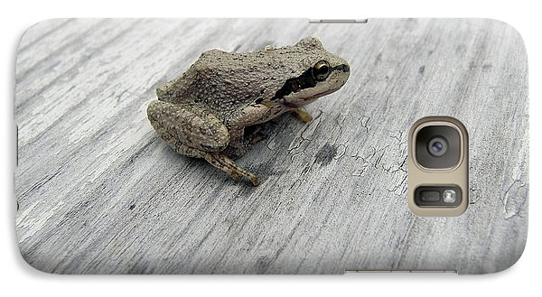Galaxy Case featuring the photograph Botanical Gardens Tree Frog by Cheryl Hoyle