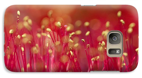 Galaxy Case featuring the photograph Bottle Brush Stamens by Chris Scroggins