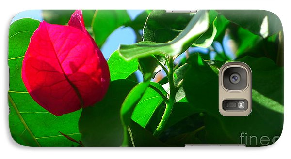 Galaxy Case featuring the photograph Bougainvillae IIi by Nora Boghossian