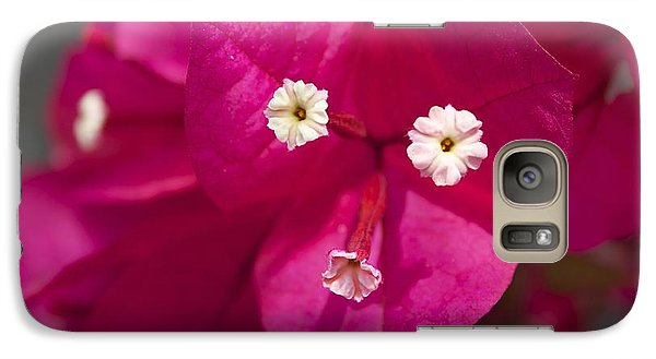 Galaxy Case featuring the photograph Bougainvillea  by David Grant
