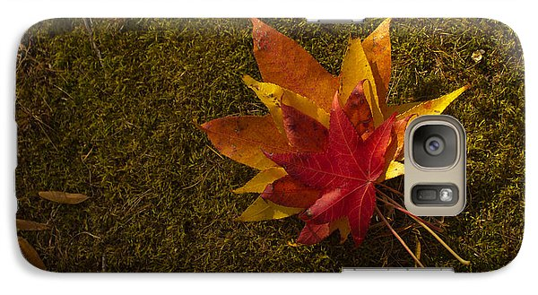 Galaxy Case featuring the photograph Bouquet Of Leaves by Jose Oquendo