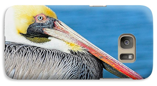 Galaxy Case featuring the photograph Bright Eyed Pelican by Pamela Blizzard
