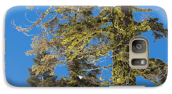 Galaxy Case featuring the photograph Bright Lichen by Jan Davies