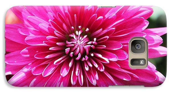 Galaxy Case featuring the photograph Bright Pink Mum by Judy Palkimas